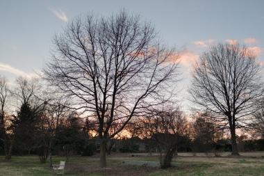 feb24color-0794