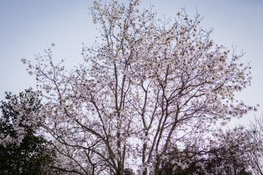 feb24color-0800